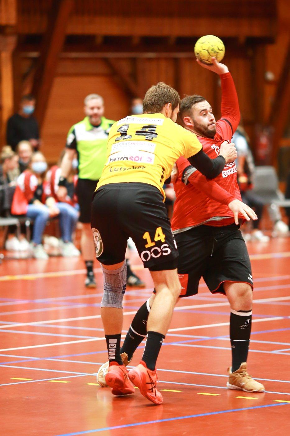 1. Liga Handball